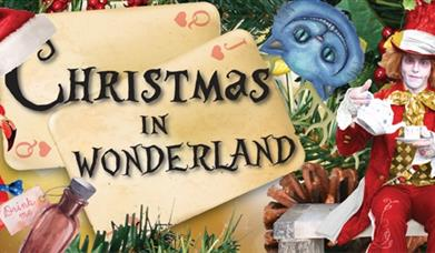Wonderland Christmas Parties
