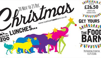 Christmas Lunches at the Zoo